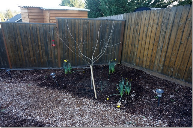 2016_Pruning_Nice_and_Clean